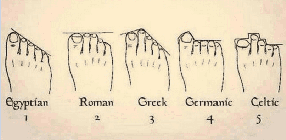 Foot Shape Ancestry: Everything You Need to Know | GenealogyBank