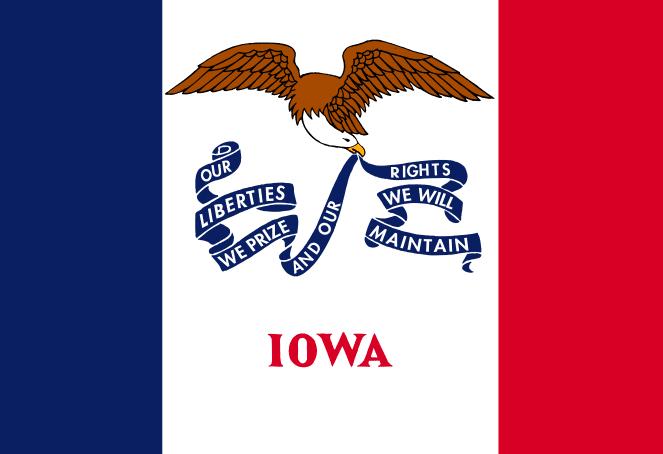 Illustration: Iowa state flag