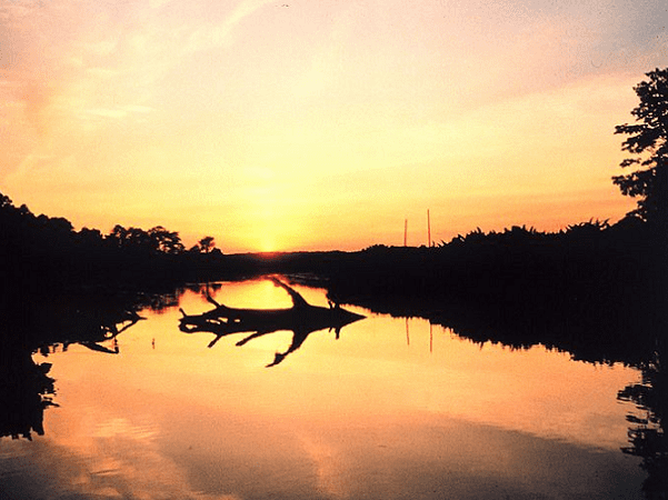 Photo: sunset over a marsh at Cardinal Cove on the Patuxent River, Maryland. Credit: Mary Hollinger; U.S. National Oceanic and Atmospheric Administration; Wikimedia Commons.