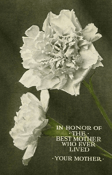 Photo: a postcard issued by the Northern Pacific Railway for Mother's Day, 1915