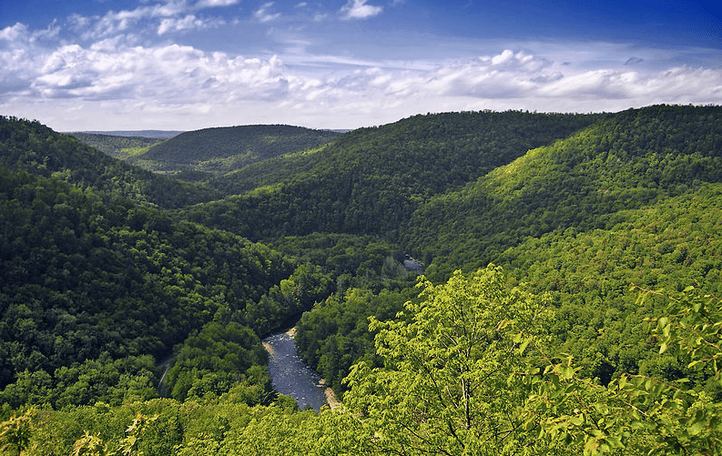 Photo: World's End State Park, Sullivan County, Pennsylvania