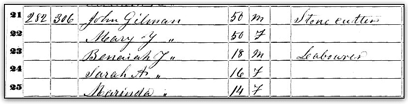 "Source: GenealogyBank, ""United States Census, 1850,"" database with images, GenealogyBank (https://genealogybank.com/#), John Gilman, Gilmanton, Belknap, New Hampshire, United States. (Original index: United States Census, 1850, FamilySearch, 2014.)"