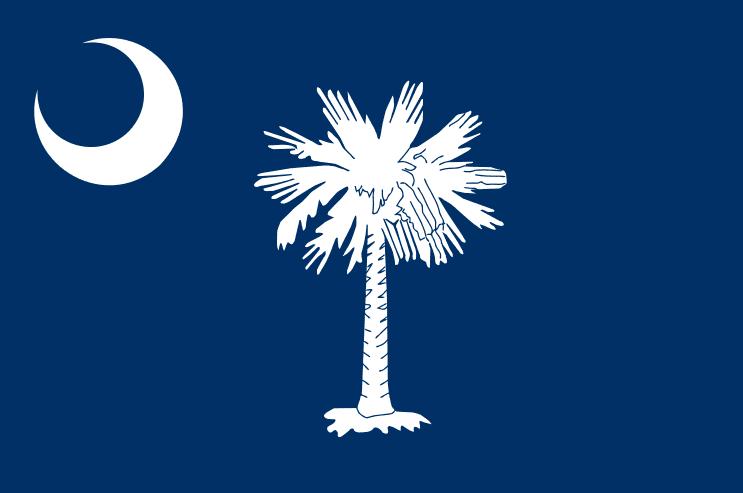 Illustration: South Carolina state flag