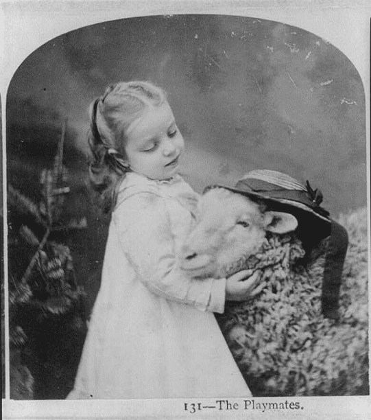 Photo: a little girl with a lamb