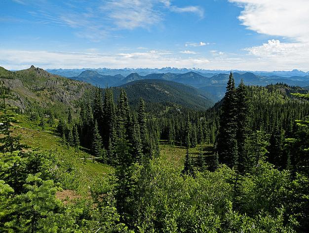 Photo: Mount Baker-Snoqualmie National Forest, Washington