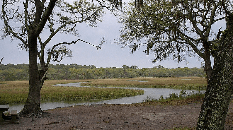 Photo: inland marshes of Jekyll Island, Georgia