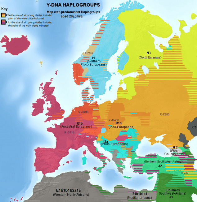 Illustration: the most common Y-DNA-haplogroup in different regions in Europe