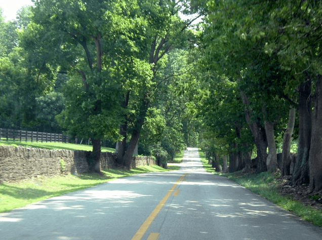 Photo: narrow country roads bounded by stone and wood plank fences are a feature in the Kentucky Bluegrass region