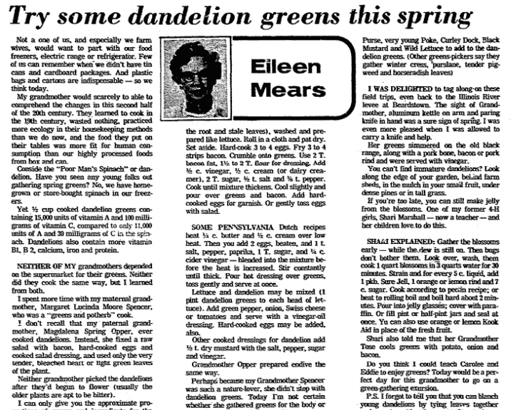 An article about dandelions, State Journal-Register newspaper article 15 April 1976