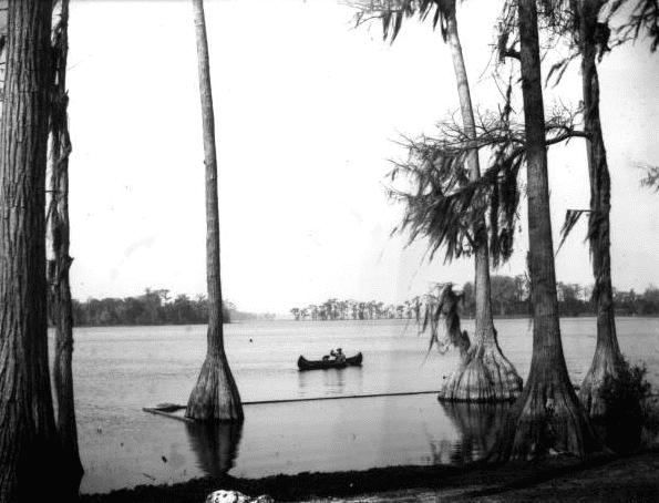 Photo: a man and child canoeing on Santa Fe Lake, Melrose, Florida, c. 1905