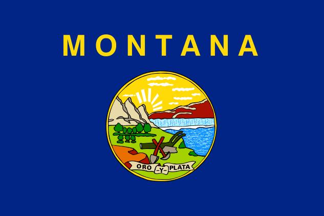 Illustration: Montana state flag