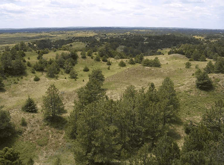 Photo: the Bessey Ranger District of the Nebraska National Forest, near Halsey, Nebraska