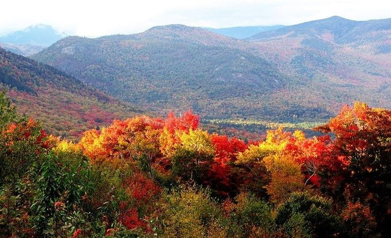 Photo: the forests in New Hampshire in autumn