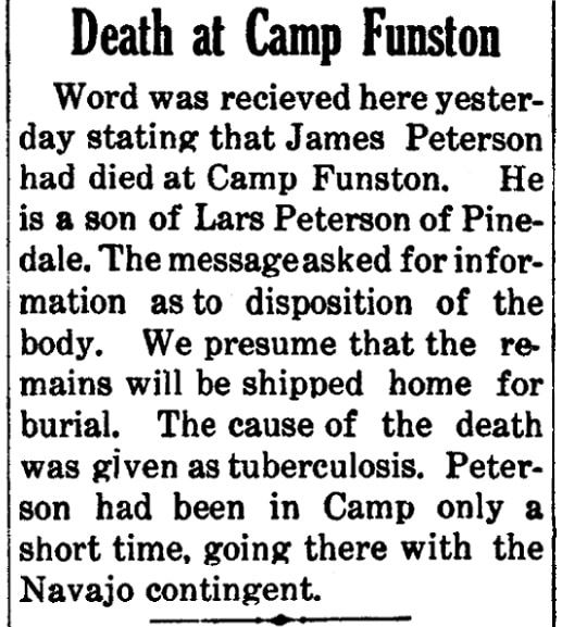 An article about Lars Peterson, Snowflake Herald newspaper article 19 October 1917