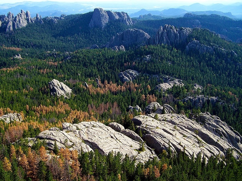 Photo: the Black Hills, a low mountain range, is located in southwestern South Dakota