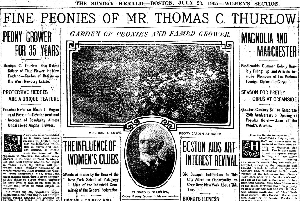 An article about Thomas Thurlow, Boston Herald newspaper article 23 July 1905