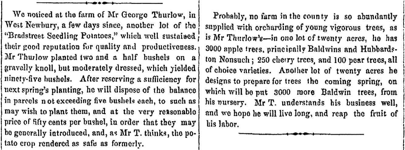 An article about George Thurlow, Newburyport Morning Herald newspaper article 1 November 1852