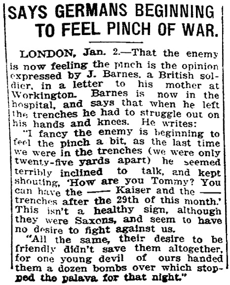 An article about WWI, Evansville Journal newspaper article 2 January 1916