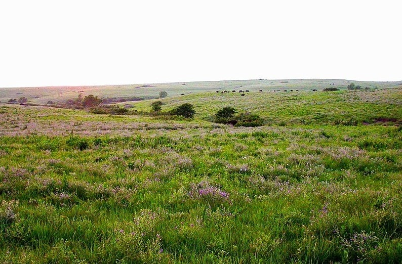 Photo: the Great Plains of Kansas