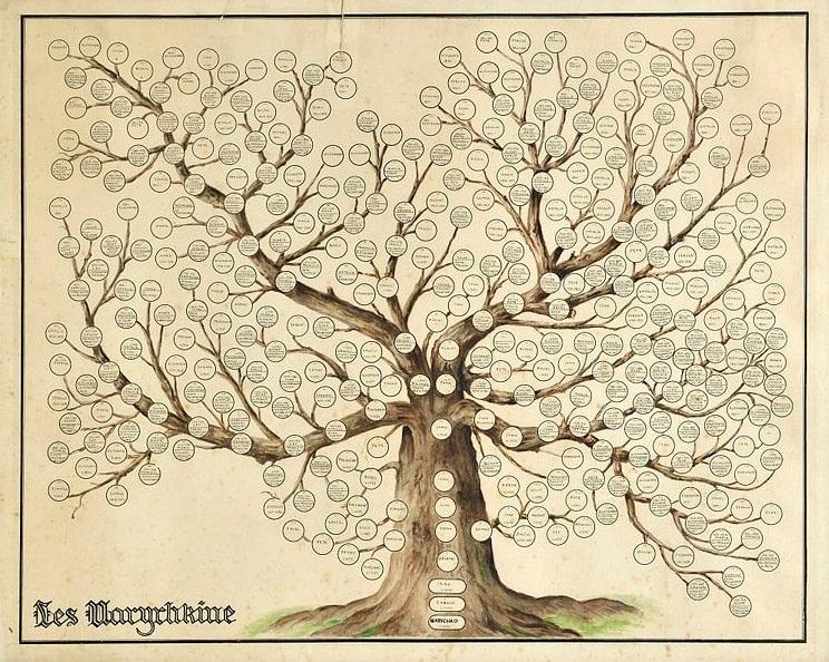Photo: Naryshkin family tree, 18th century